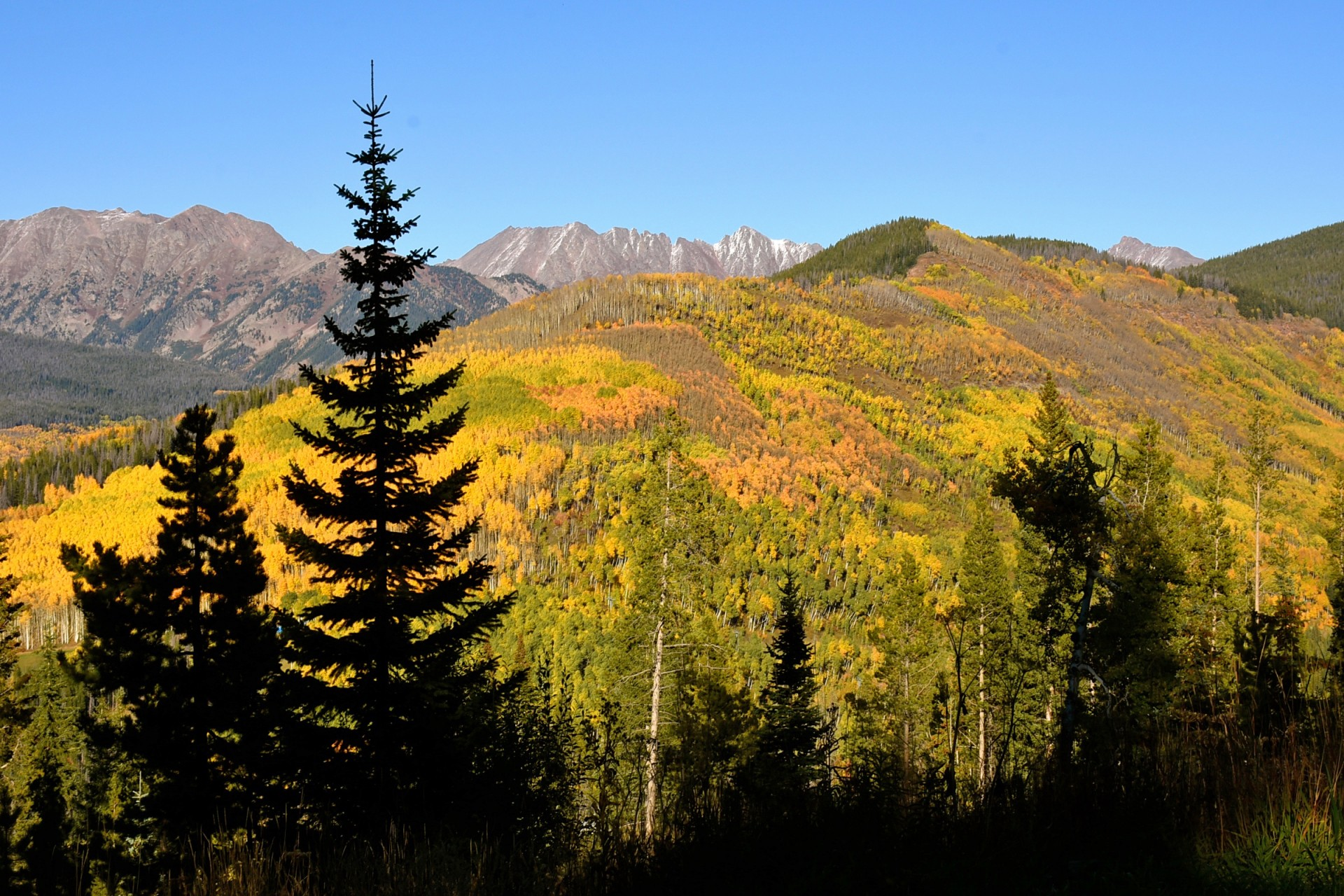 Best Fall Hikes in Vail