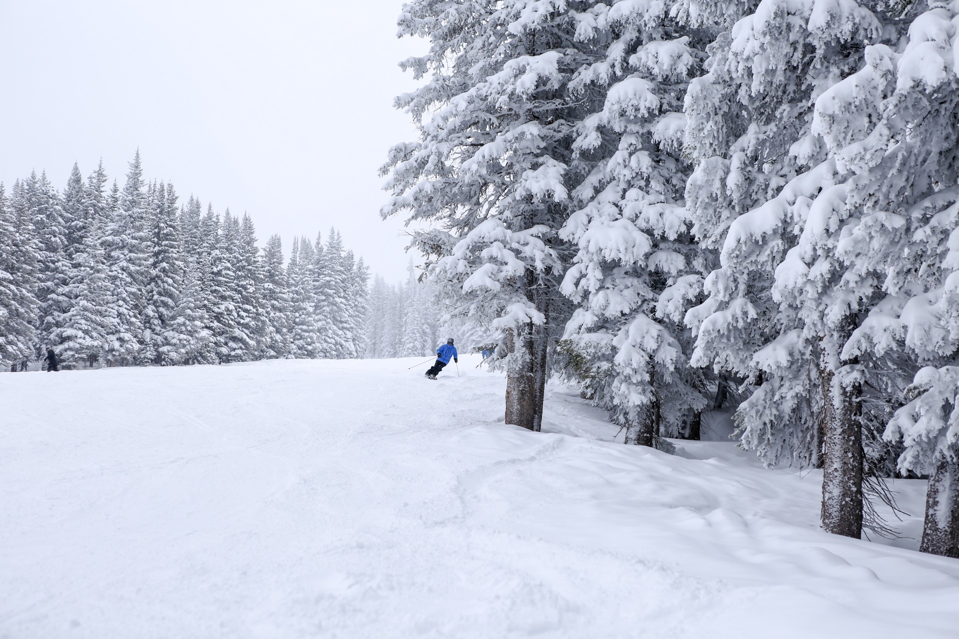 Vail Mountain Is 100% Open