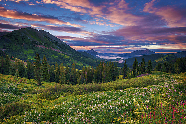 The lush summer slopes of Vail Mountain stand under a blue and pink sky.